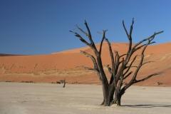 2006-10-04_Namibia_007