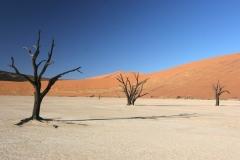 2006-10-04_Namibia_009