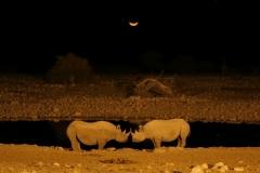 2006-10-04_Namibia_019