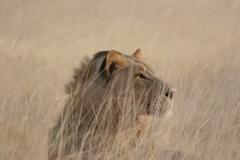 2006-10-04_Namibia_021